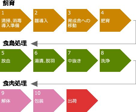 会津地鶏生産及び食鳥処理、食肉処理の工程